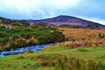 Torc Mountain Walk, Killarney, Ireland