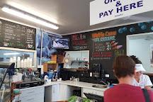 Blueberry Corner, Whakatane, New Zealand