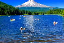 Evergreen Escapes Portland, Portland, United States