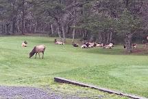 Nehalem Bay State Park, Nehalem, United States