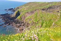 Ballycotton Cliff Walk, Ballycotton, Ireland
