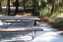 Carolina Beach State Park, Carolina Beach, United States