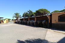 Ranch la Camargue, Marseillan Plage, France