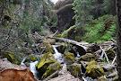 Boulder Cave Trail