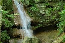 Falls Ridge Preserve, Elliston, United States