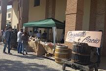 Cantina le Cimate, Montefalco, Italy