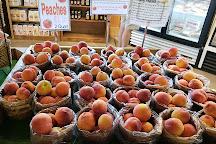 Shenot Farm & Market, Wexford, United States