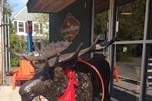 The Chocolate Moose, Bar Harbor, United States