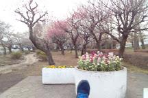 Sengawa Park, Mitaka, Japan