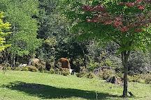 Hogsback Arboretum, Hogsback, South Africa