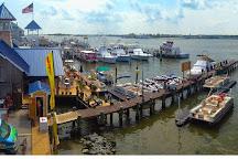 Under the Bridge Watersports, Ocean City, United States