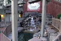 Wild Bear Falls Waterpark, Gatlinburg, United States