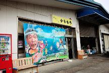 Wakasa Fisherman's Wharf, Obama, Japan