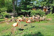 Oklahoma City Zoo and Botanical Garden, Oklahoma City, United States