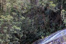 Tarra Falls, Tarra Valley, Australia