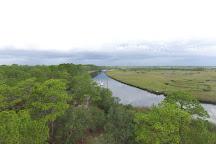 Ochlockonee River State Park, Sopchoppy, United States