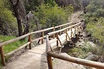 Río de Los Cipreses National Reserve, Rancagua, Chile