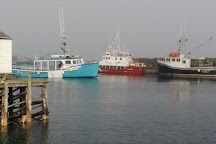 Mariner Cruises Whale and Seabird Tours, Brier Island, Canada