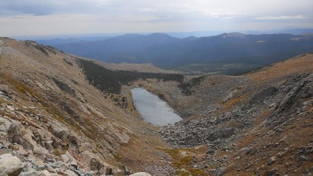 Mount Goliath Natural Area
