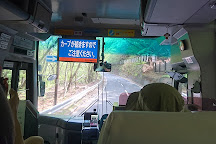 Irohazaka Route, Nikko, Japan
