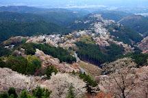 Mt. Yoshino, Yoshino-cho, Japan