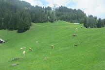 First, Grindelwald, Switzerland