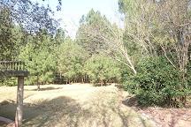 Chattar Park, Murree, Pakistan