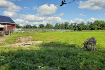 Terhune Orchards & Winery, Lawrence Township, United States