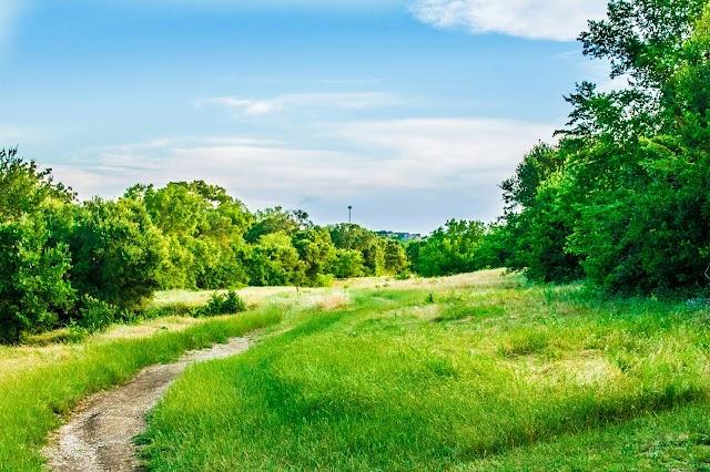 Arbor Hills Trails