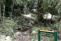 Lake Wombat Track, Franz Josef, New Zealand