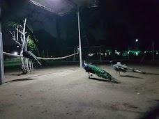 Rachna Wild Life Park gujranwala