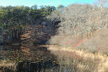 Beech Forest, Provincetown, Provincetown, United States