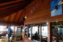 Volcan Osorno Centro de Ski y Montana, Ensenada, Chile