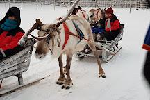 Jaakkola Reindeer Farm, Luosto, Finland