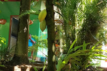 New Paradise Spice & Herbal Garden, Mawanella, Sri Lanka