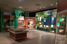 Muzeum Archeologiczne w Biskupinie, Biskupin, Poland