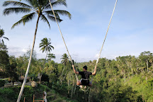 Aloha Ubud Swing, Ubud, Indonesia