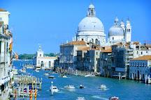 Ponte dell'Accademia, Venice, Italy
