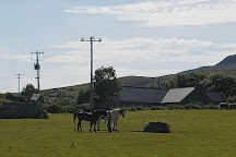 Croagh Patrick Stables, Westport, Ireland