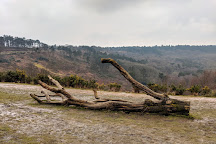 Hindhead Commons and the Devil's Punch Bowl, Hindhead, United Kingdom