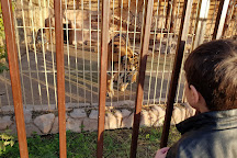 Duhok Zoo, Duhok, Iraq