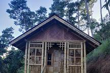 Keibul Lamjao National Park, Bishnupur, India