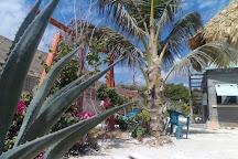 Dreamtime Dive Center, Mahahual, Mexico