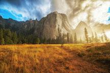 Ansel Adams Gallery, Yosemite National Park, United States