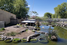 Colorado Gators Reptile Park, Mosca, United States