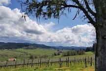 Sweet Cheeks Winery, Eugene, United States