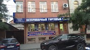 Ветеринарный торговый центр «Рост», улица Далгата на фото Махачкалы