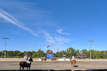 Twilight Polo, The Plains, United States