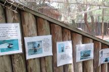 Hardee County Wildlife Refuge, Zolfo Springs, United States