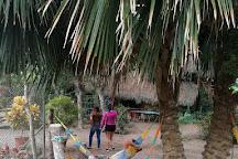 Rio Muchacho Organic Farm, Canoa, Ecuador